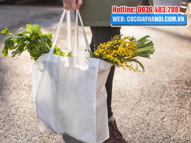 Túi vải đựng thực phẩm đi chợ